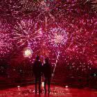 Sony: Fireworks